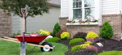 landscaping-520w