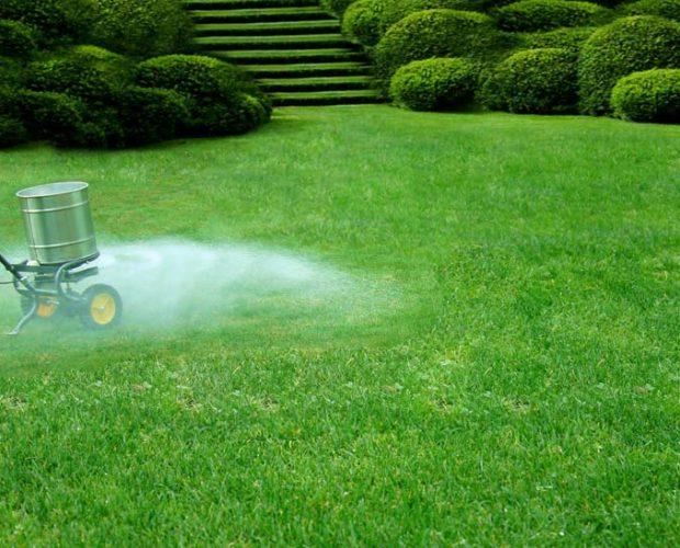 lawn-fertilization-820w